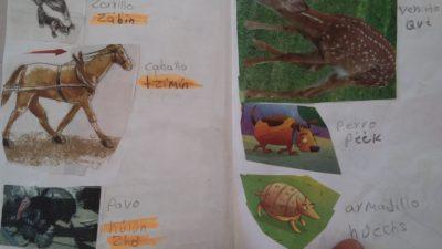 El futuro de la lengua maya se decidirá en Yucatán, donde 29 de cada 100 habla el idioma