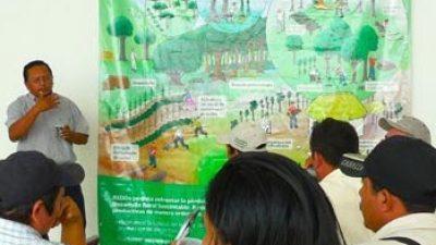 Una estrategia para preservar los montes mayas