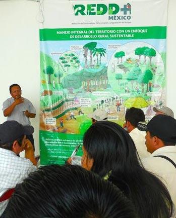 Productores mayas reunidos en Peto