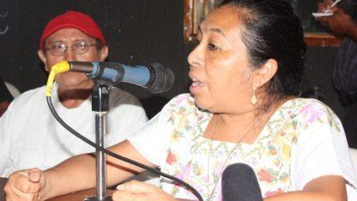 El maíz transgénico no soporta la sequía ni el tiempo, dicen campesinos mayas