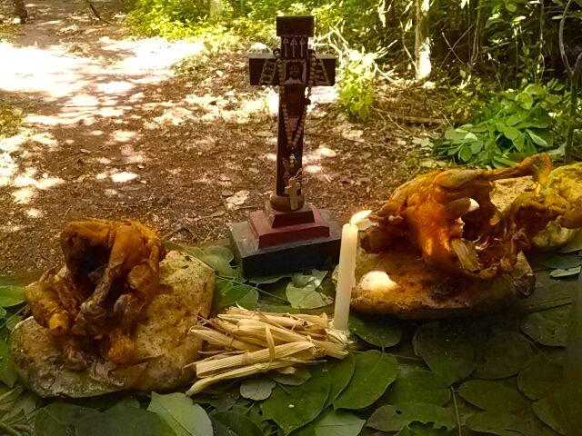 Pollos enteros entre la ofrenda a las deidades mayas
