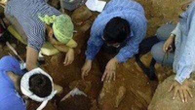 Xtojil revela los antecedentes de la Chichén de los mayas