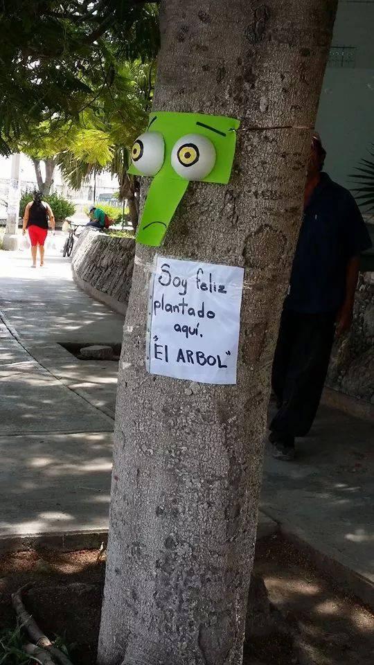 Los árboles que reclaman fueron una sensación esta mañana