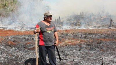 Campesinos mayas aprenden la lección e inician las quemas