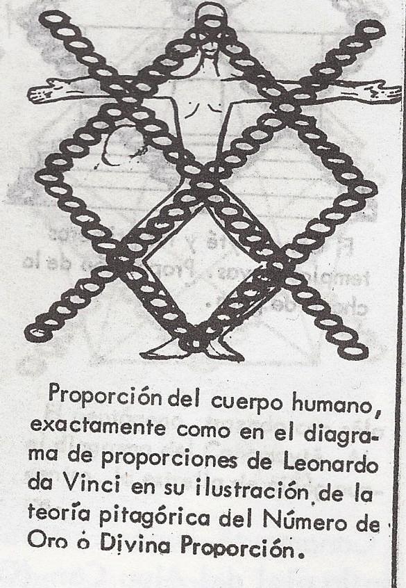 canamayte_proporcion_humana