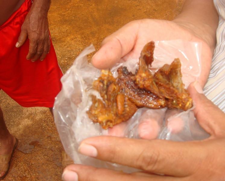 Carne freída de víbora de cascabel, convidada a El Chilam Balam en Tixhualahtún, comisaría de Peto.