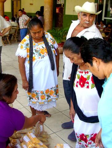 Feria de las semillas, una iniciativa campesina para preservar el los granos criollos.