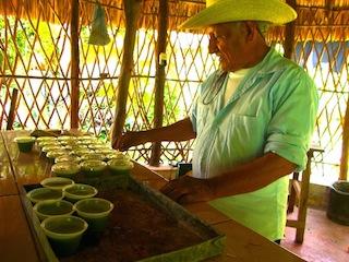 El jmeen Mario Euán prepara medicamentos en la escuela ecológica de Maní