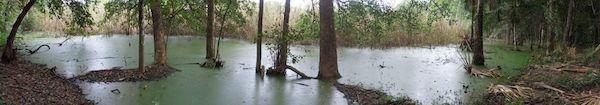 Laguna de Yokop, en Huaymax, Quintana Roo