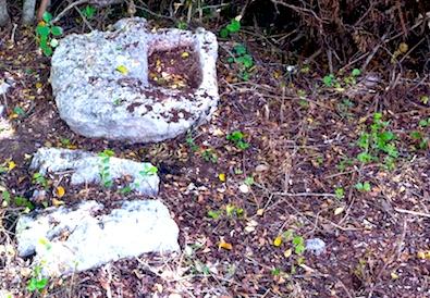 Pequeños recipientes de agua en montes de Chablekal