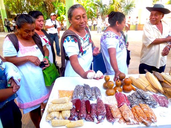 Mujeres comprando semillas criollas