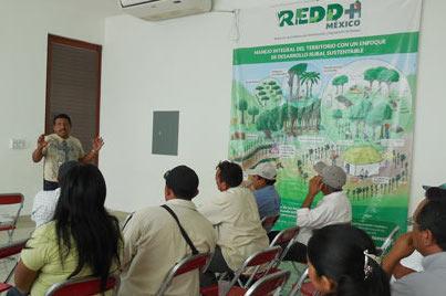 Un productor explicando los mecanismos del programa REDD+ para reducir la deforestación