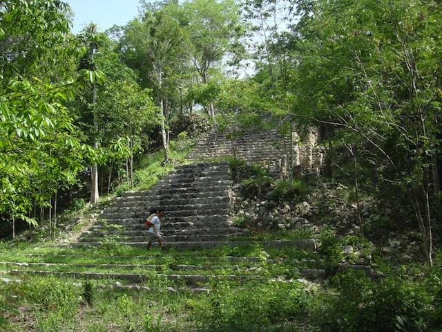 Pirámide principal de Yaxunah, rodeada por una exuberante vegetación
